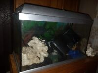 Fish tank 2ft with pump and ornaments