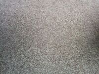 Good Quality Carpet and Underlay - Free