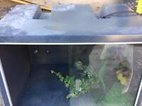 Plastic Viv free to collect has glass doors that slide