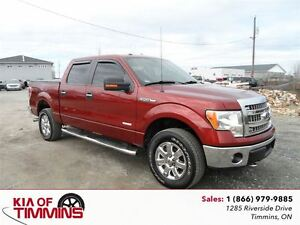2014 Ford F-150 XTR SUPERCREW SIDE STEPS