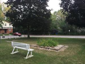 Rooms for rent! Great for young professionals! 1 MONTH FREEEEEEE Kitchener / Waterloo Kitchener Area image 3