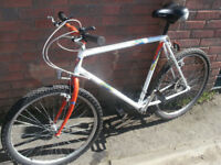 Falcon Manta Mountain Bike 1980's