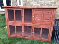 Bluebell two level rabbit hutch