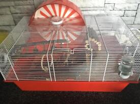 Syrian hamster + cage ect.