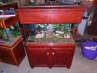For sale 160 litre fish tank / aquarium with hand made cabinet and hood