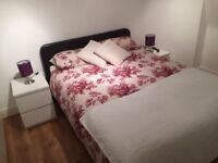 LOVELY DOUBLE ROOM IN TOOTING BEC AVAILABLE NOW