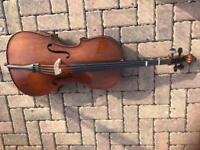 Cello 1/2 Size Stentor. VG condition.