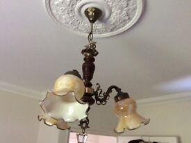 Unusual Ceiling light, glass shades