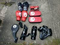 Taekwondo boxing gloves and sparring gloves