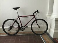 Specialized retro mountain Bike - project build
