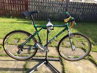 GT All Terra Timberline Custom Built Retro Mountain Bike