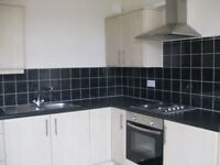 2 BEDROOMS   Lower Flat   CLOSE TO SHOPPING CENTRE   Lord Street, Seaham   R262