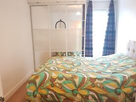 Lovely Room to Let for Single Professional