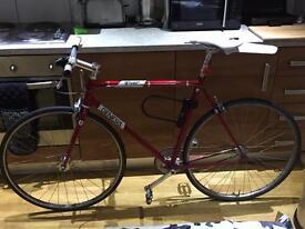 Single Speed Bike 56cm