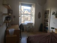 Beautiful room (art and plants) available for 10 days over the Edinburgh fringe festival