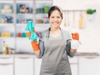 Do you need a domestic cleaner or housekeeper?