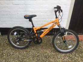 "Boys Apollo 20"" orange bike"