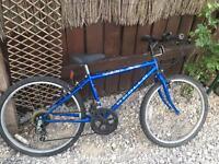 Appollo 24 inch wheel mountain bike