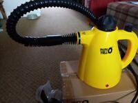 Electric mini steamer