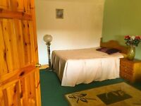 £65 only spacious double bedroom for rent available now