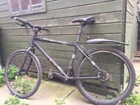 mans bike carerra