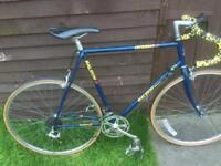 1980s vintage raleigh criterium 12 thriathlon leightweight Reynolds 501 frame road racing bike large
