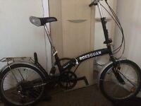 Adult folding bike