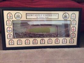 Newcastle United Picture