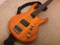 Mtd Kingston artist active bass