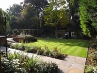 Diversity Gardens - High-Quality Garden Services & Landscaping in (and around) North London