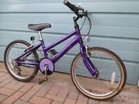 RALEIGH SALSA GIRLS BICYCLE FOR SALE