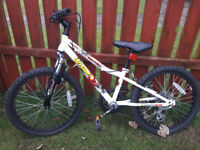 BLOCK BUY 10 BIKES (May sell separately)