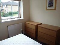 Malm (Ikea) Bedroom Chest of Drawers x2