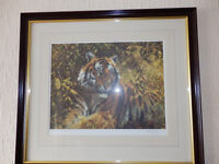 Tony Forest Bengal Tiger Limited edition Print 140/500 Pencil Signed Lovely Condition