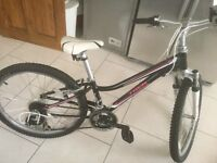 Kids Trek Mountain Bike/ SOLD, SOLD