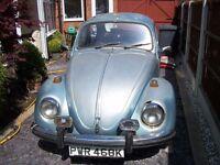 1972 Marathon Beetle - Restoration Project