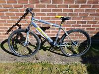 Boss vortex hybrid bike