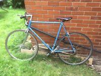 Bike - £50