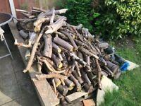 Large quantity of logs. Various sizes