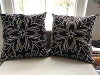 60 x 60 chocolate brown with white stitch detail scatter cushions