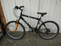 Mountain bike, free delivery
