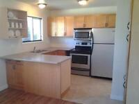 Four bedroom Home in College Heights