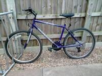 Matina bicycle