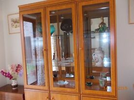Large Display Cabinet / Unit