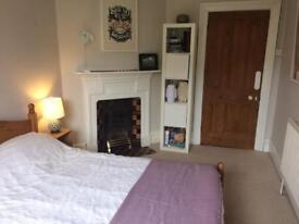 Double room available in delightful large Victorian townhouse in south Bristol