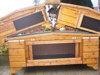 "rabbit hutch 48"" wide robust germfree easy cleaned worth viewing"