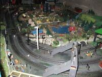 """oo"" gauge train layout"