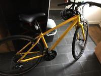 Raleigh mens bike