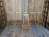Ercol moustache chairs x6 Windsor goldsmith gold label mid century modern vintage elm high gplanera