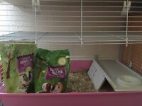 Guinea pig cage, hay and food